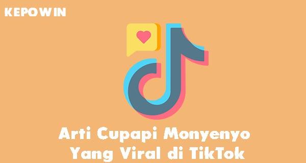 Arti Cupapi Monyenyo di TikTok