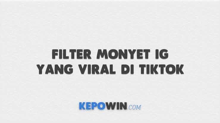 Filter Monyet IG yang Viral di Tiktok