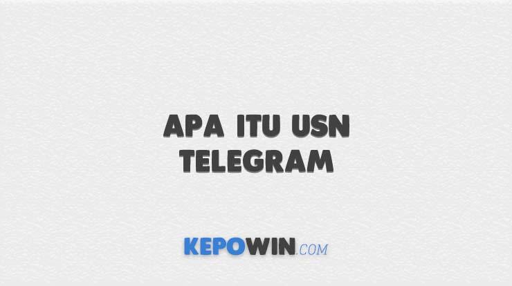 Apa itu USN Telegram